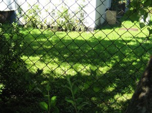Võrkaed - aiad, puitaed, võrkaed, paneelaed, piirdeaiad, aiaehitus